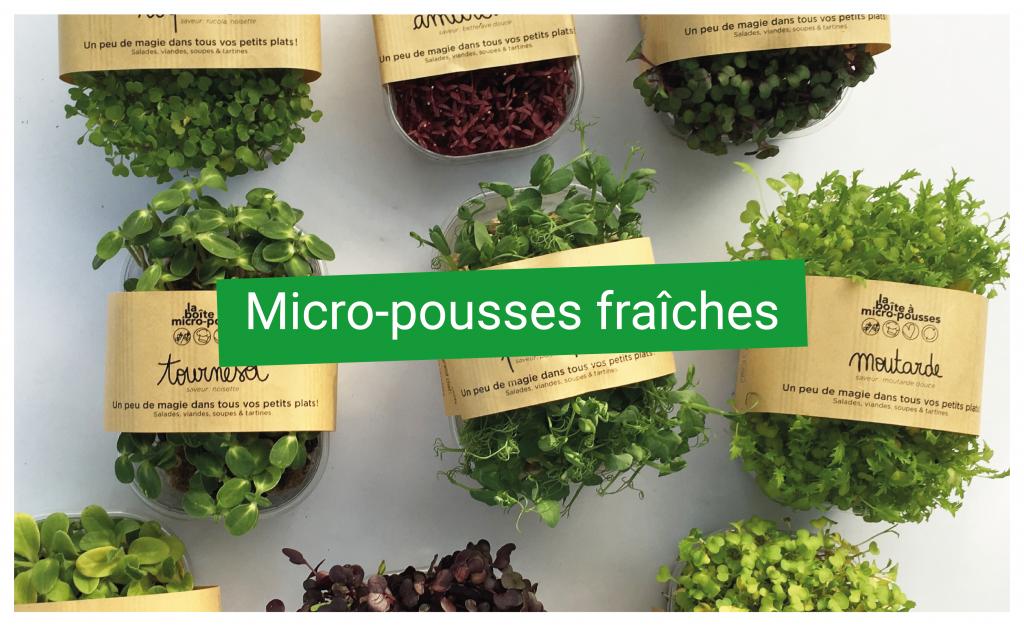 Micro Pousses Fraiches