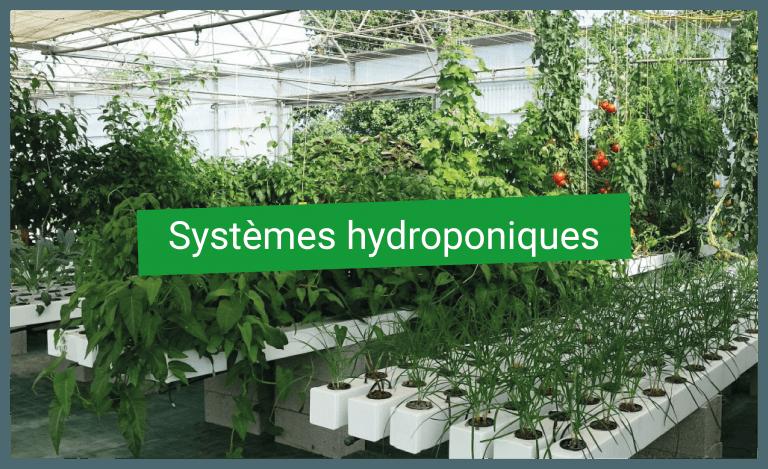 Systèmes hydroponiques
